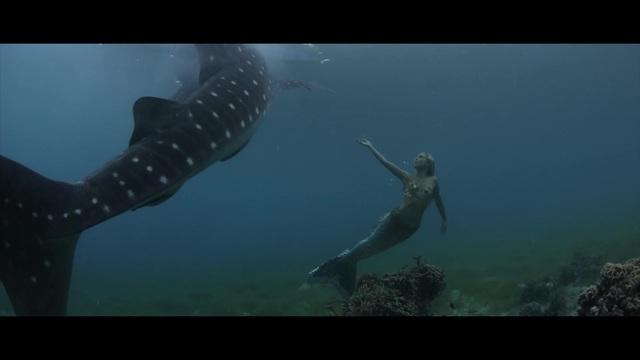 Die kleine Meerjungfrau - Freunde fürs Leben Video 3