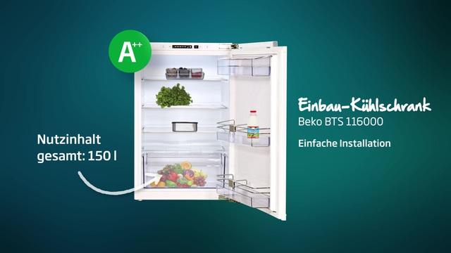 Beko - BTS 116000 Einbau-Kühlschrank Video 3